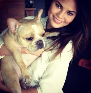 Chrissy Teigen french bulldog - Pippa