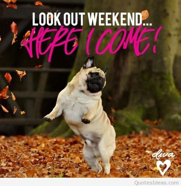 Look out weekend... Here I Come!
